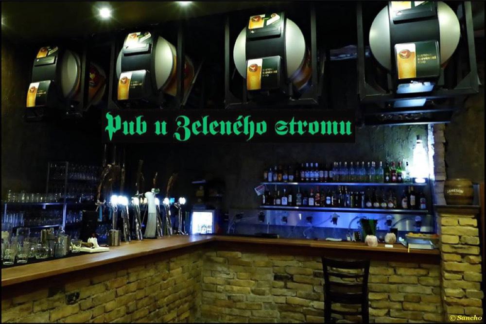 Pub u Zeleného stromu - 16